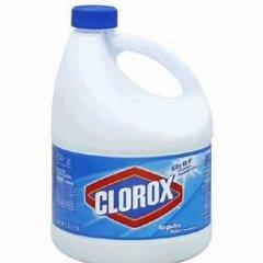 CloroxBleach237